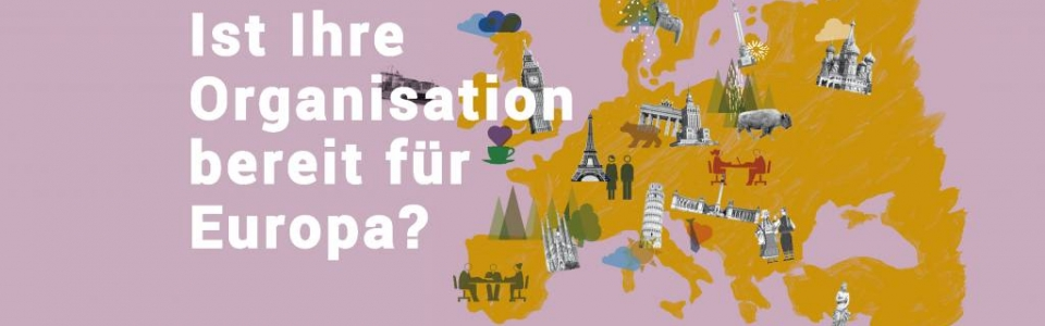eu-fundraising association_eu-projekt-europeanisation_online selbstanalyse-instrument_logo